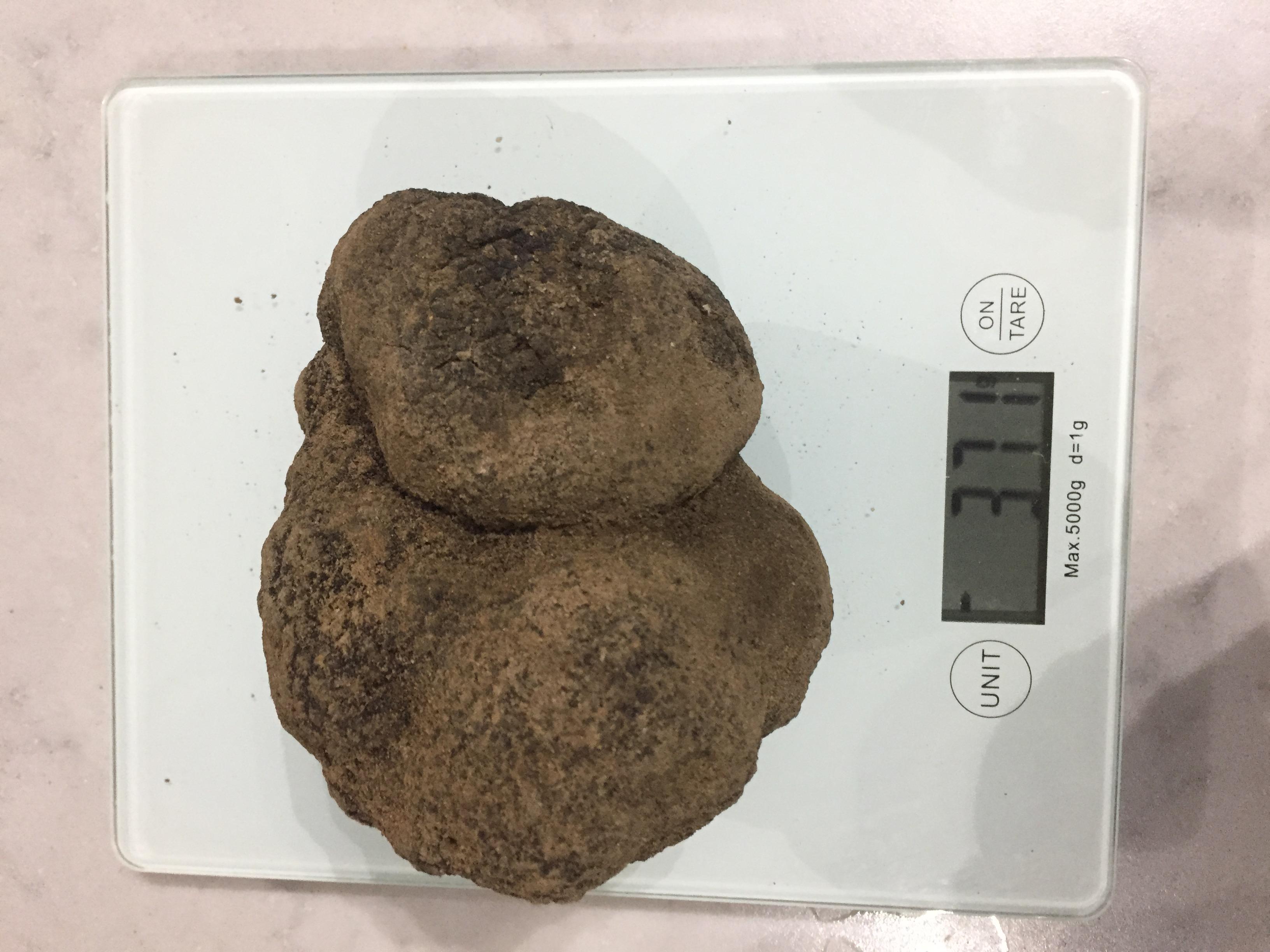 371g truffle