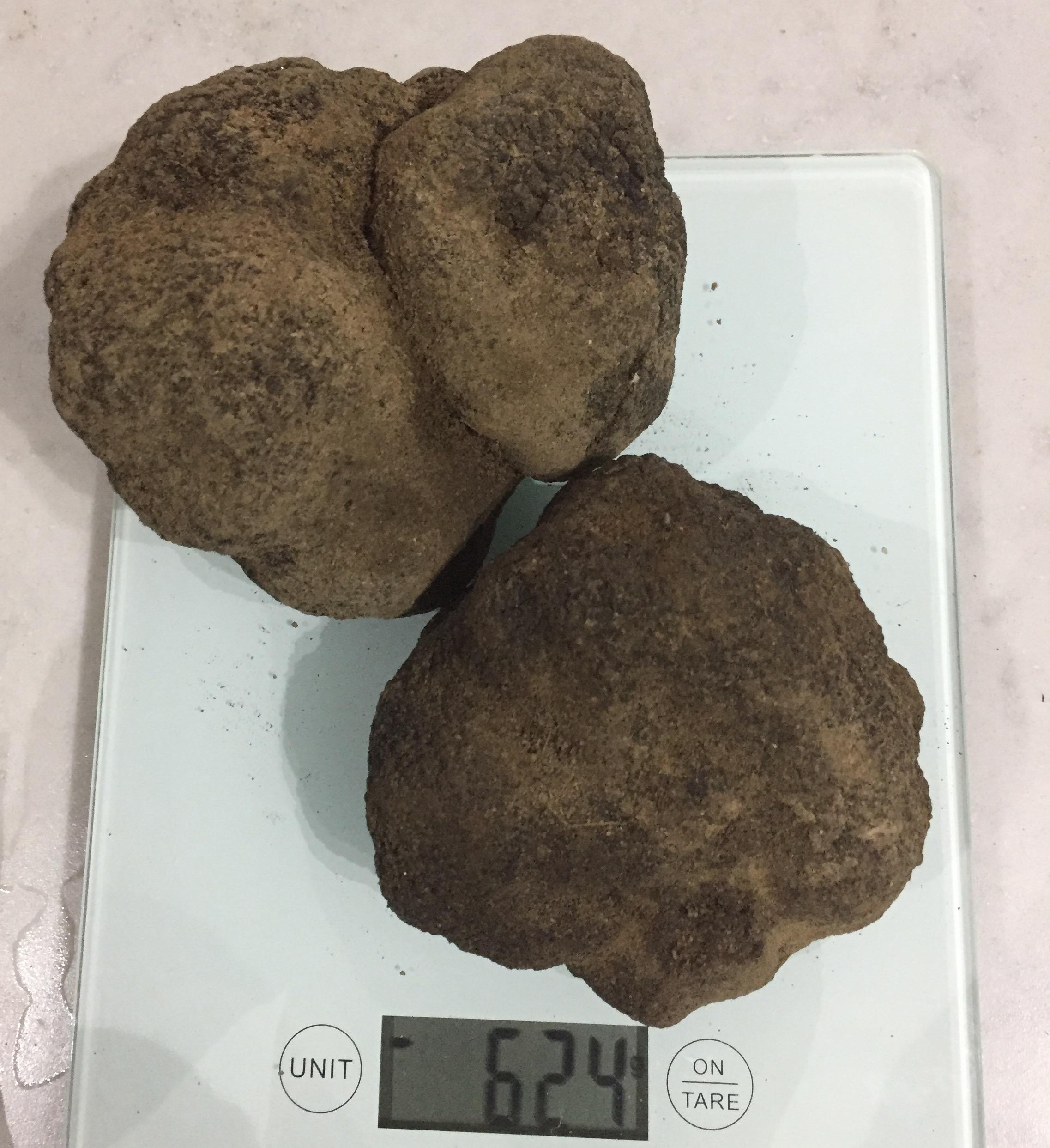 624g truffles