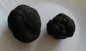 Two perfect truffles